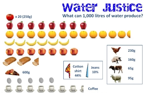 water justice infographic