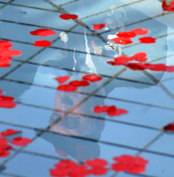 reflections of war veterans in the fountain in Trafalgar Square during the two minute silence