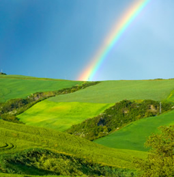 green field with a rainbow overhead