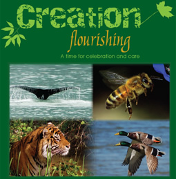 Creation Flourishing
