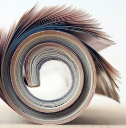 rolled-up magazines